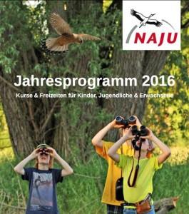 Naju 2016 Programm